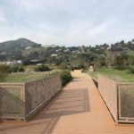 legacy park bridge